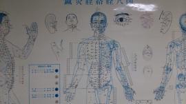 東洋医学も力になります。